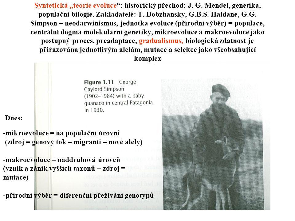 """Syntetická """"teorie evoluce"""": historický přechod: J. G. Mendel, genetika, populační bilogie. Zakladatelé: T. Dobzhansky, G.B.S. Haldane, G.G. Simpson –"""
