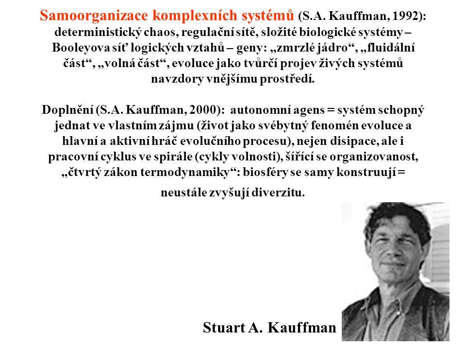 Samoorganizace komplexních systémů (S.A. Kauffman, 1992): deterministický chaos, regulační sítě, složité biologické systémy – Booleyova síť logických