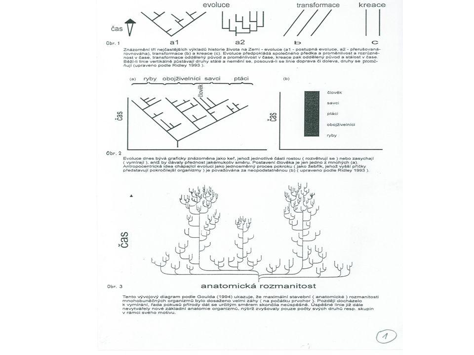 """změna prostředí reflektovaná potřeba proměna organizmů směrem k uspokojení potřeby, dědičnost získaných vlastností, """"evoluce jako zákonitý sled událostí , publikoval první schema (strom) o 60 let dříve než Darwin J."""