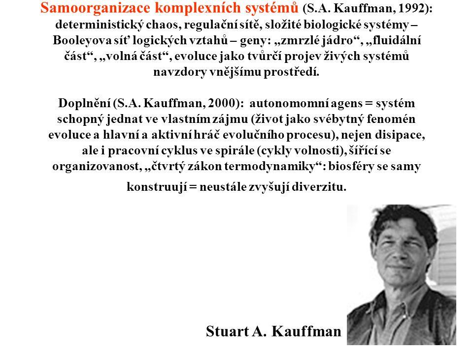 Samoorganizace komplexních systémů (S.A.