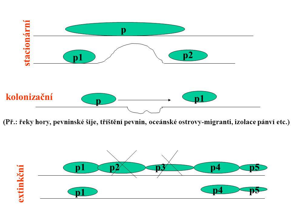 p stacionární kolonizační extinkční p1 p2 p p1 p2p3p4p5 p1 p4p5 (Př.: řeky hory, pevninské šíje, tříštění pevnin, oceánské ostrovy-migranti, izolace p