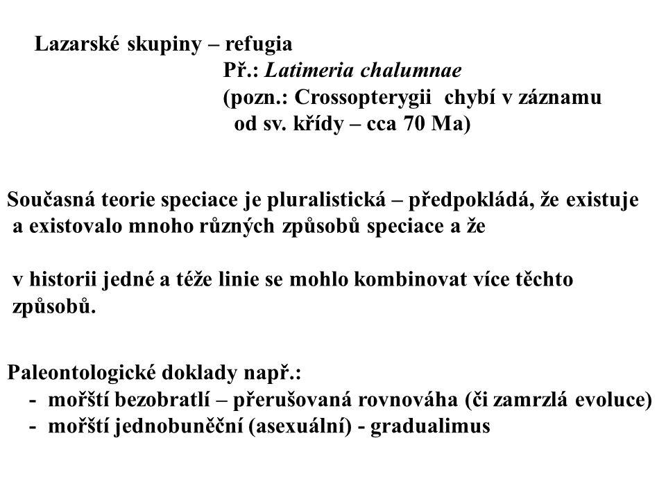 Lazarské skupiny – refugia Př.: Latimeria chalumnae (pozn.: Crossopterygii chybí v záznamu od sv. křídy – cca 70 Ma) Současná teorie speciace je plura