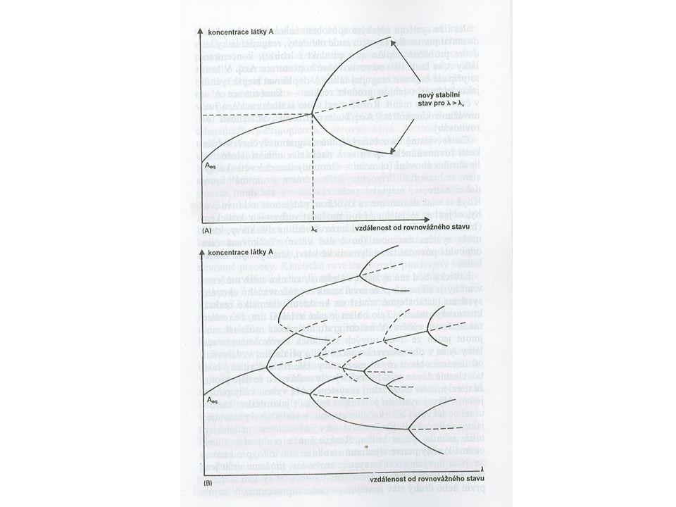 Příklad gradualismu – vývojová linie planktonních foraminifer v paleocénu během cca 6,5 mil.