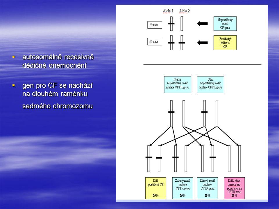  autosomálně recesivně dědičné onemocnění  gen pro CF se nachází na dlouhém raménku sedmého chromozomu
