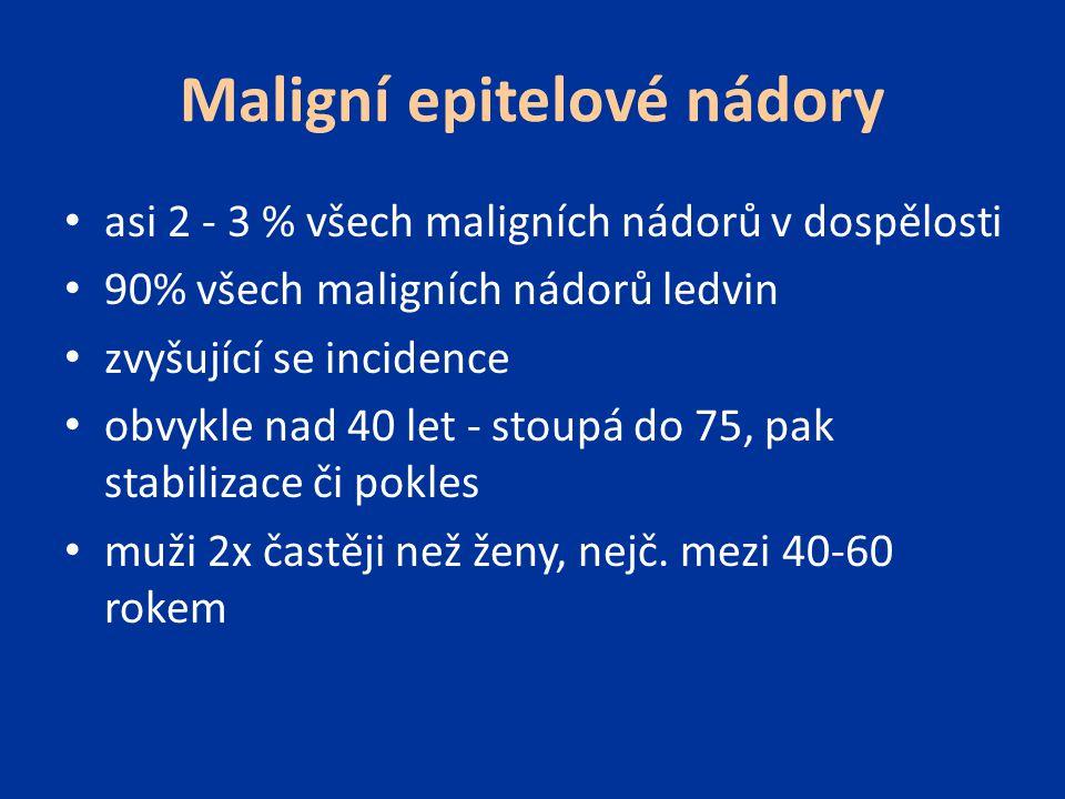 Maligní epitelové nádory asi 2 - 3 % všech maligních nádorů v dospělosti 90% všech maligních nádorů ledvin zvyšující se incidence obvykle nad 40 let -