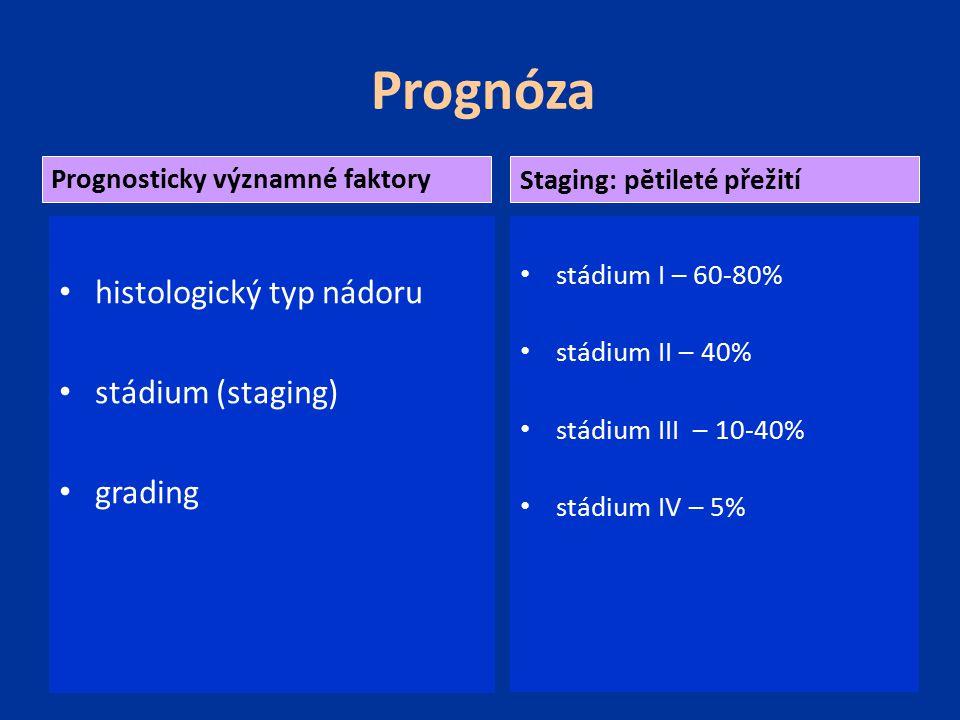 Prognóza histologický typ nádoru stádium (staging) grading stádium I – 60-80% stádium II – 40% stádium III – 10-40% stádium IV – 5% Prognosticky význa