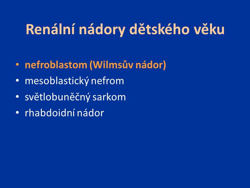 Renální nádory dětského věku nefroblastom (Wilmsův nádor) mesoblastický nefrom světlobuněčný sarkom rhabdoidní nádor
