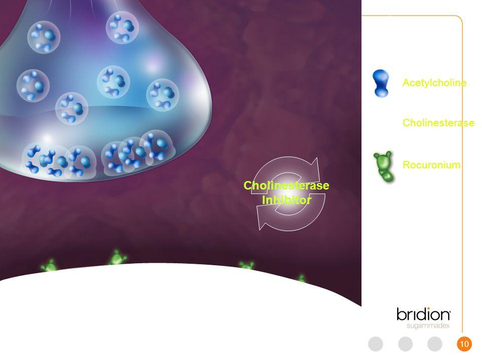 10 Scene 3 Cholinesterase Inhibitor Acetylcholine Cholinesterase Rocuronium