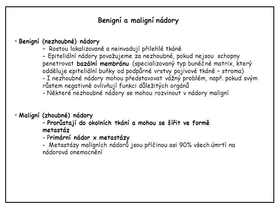 Benigní (nezhoubné) nádory – Rostou lokalizovaně a neinvadují přilehlé tkáně - Epiteliální nádory považujeme za nezhoubné, pokud nejsou schopny penetr