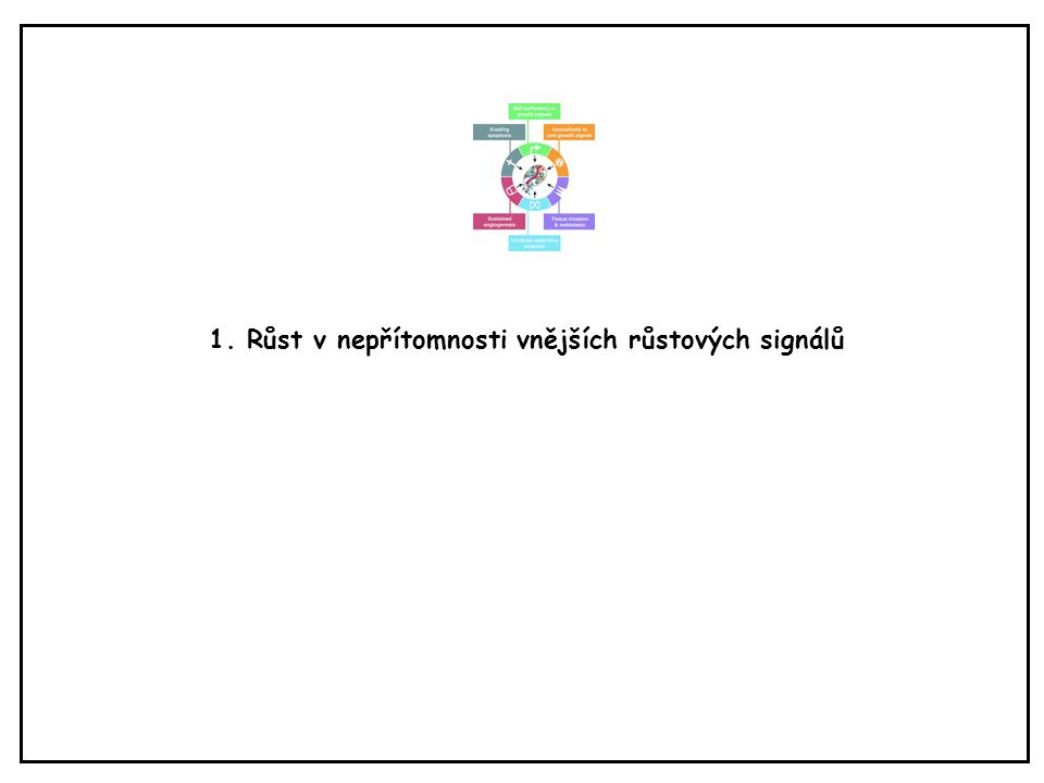 Kmenové buňky nádorů (identifikovány u leukémií, karcinomu prsu, maligního melanomu atd.) http://en.wikipedia.org/wiki/Cancer_stem_cell Ne každá nádorová buňka je schopna dát vznik novému nádoru – pouze tzv.