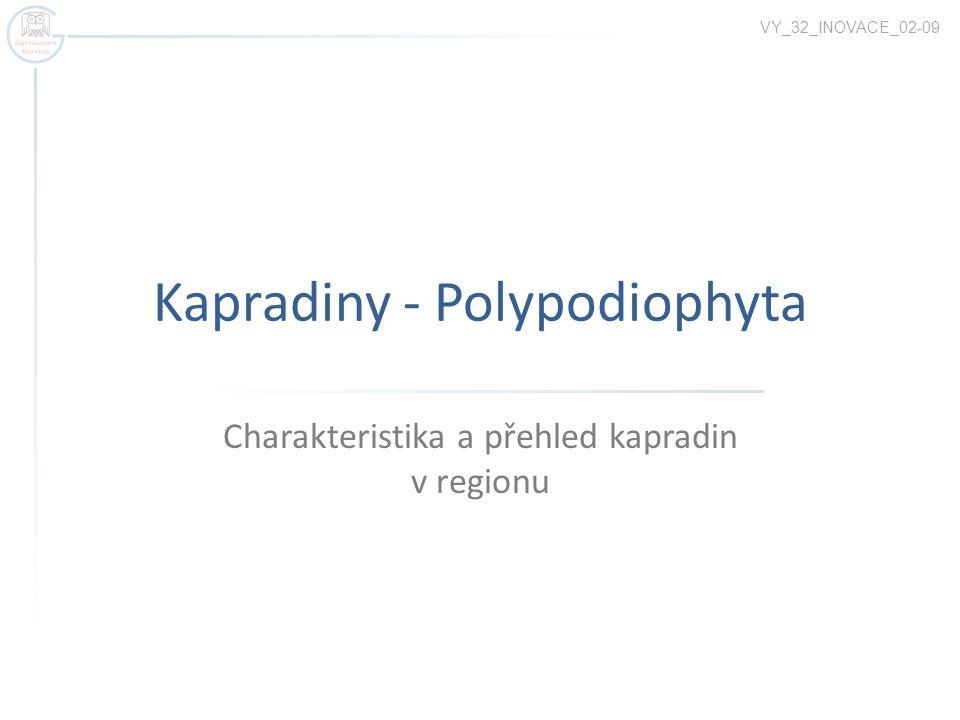 Kapradiny - Polypodiophyta Charakteristika a přehled kapradin v regionu VY_32_INOVACE_02-09