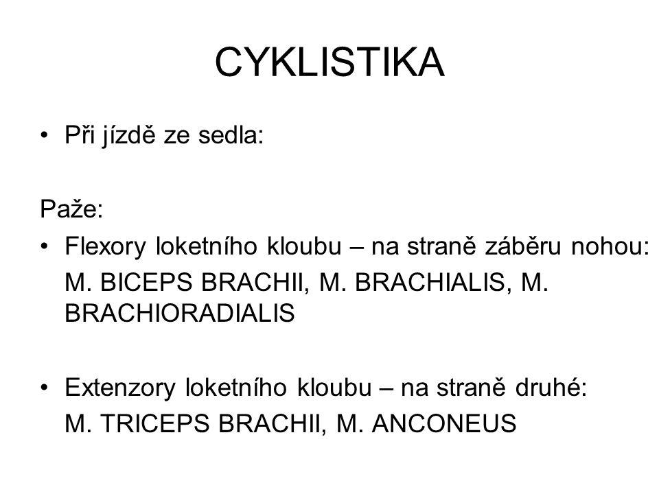 CYKLISTIKA Při jízdě ze sedla: Paže: Flexory loketního kloubu – na straně záběru nohou: M. BICEPS BRACHII, M. BRACHIALIS, M. BRACHIORADIALIS Extenzory
