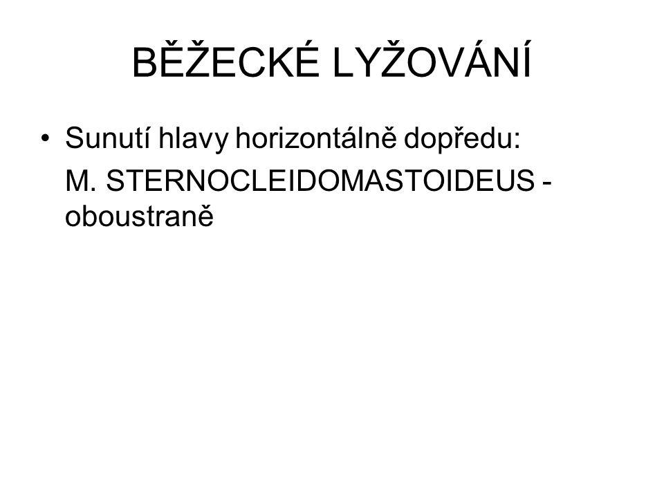 Sunutí hlavy horizontálně dopředu: M. STERNOCLEIDOMASTOIDEUS - oboustraně BĚŽECKÉ LYŽOVÁNÍ
