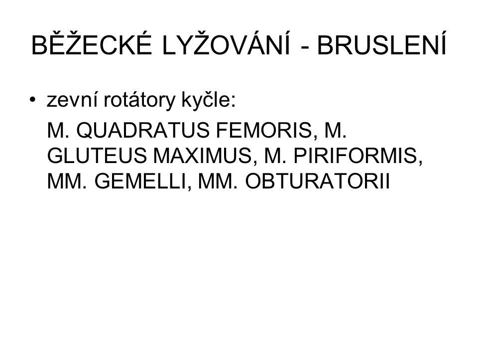 zevní rotátory kyčle: M. QUADRATUS FEMORIS, M. GLUTEUS MAXIMUS, M. PIRIFORMIS, MM. GEMELLI, MM. OBTURATORII BĚŽECKÉ LYŽOVÁNÍ - BRUSLENÍ