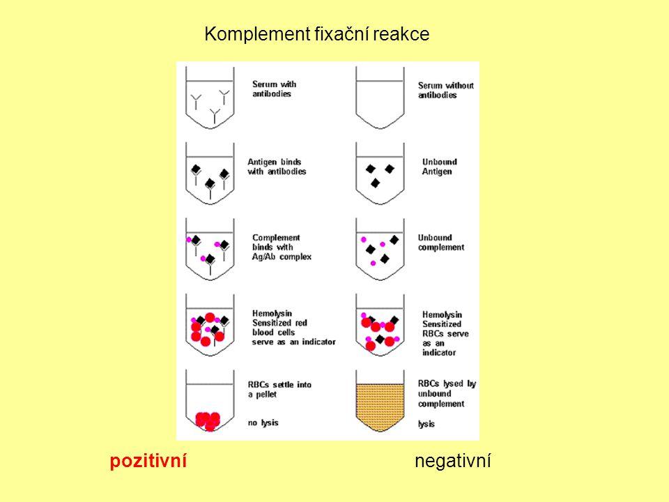 Komplement fixační reakce pozitivnínegativní