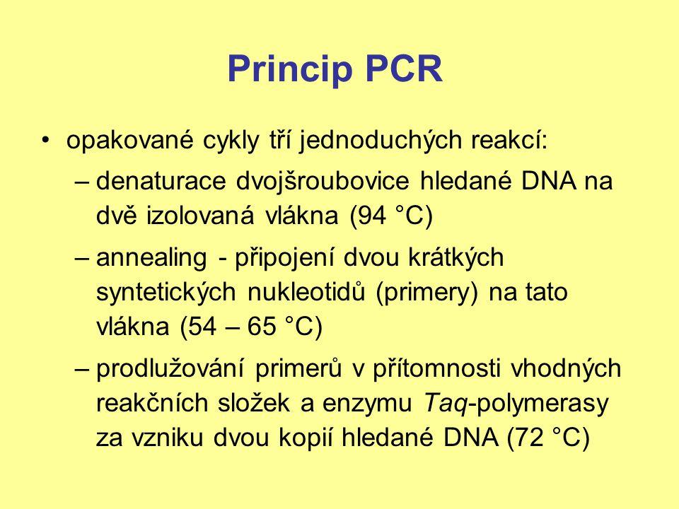 Princip PCR opakované cykly tří jednoduchých reakcí: –denaturace dvojšroubovice hledané DNA na dvě izolovaná vlákna (94 °C) –annealing - připojení dvo