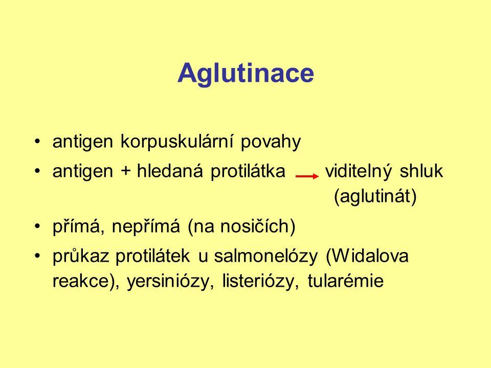 Aglutinace antigen korpuskulární povahy antigen + hledaná protilátka viditelný shluk (aglutinát) přímá, nepřímá (na nosičích) průkaz protilátek u salm