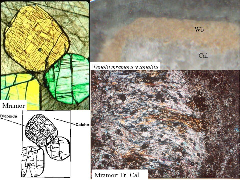 Xenolit mramoru v tonalitu Wo Cal Mramor Mramor: Tr+Cal