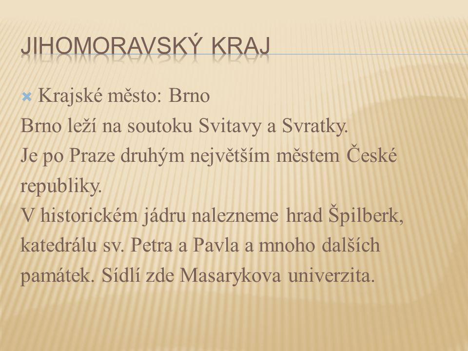  Krajské město: Brno Brno leží na soutoku Svitavy a Svratky. Je po Praze druhým největším městem České republiky. V historickém jádru nalezneme hrad