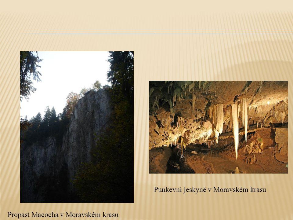 Propast Macocha v Moravském krasu Punkevní jeskyně v Moravském krasu