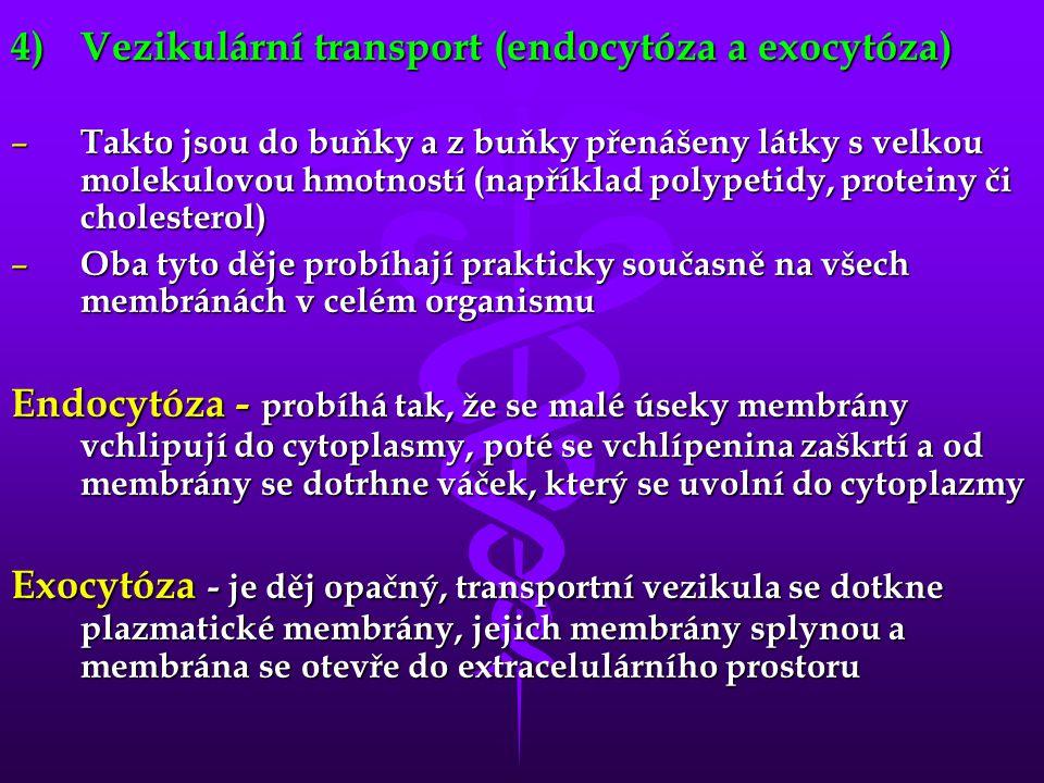 4)Vezikulární transport (endocytóza a exocytóza) – Takto jsou do buňky a z buňky přenášeny látky s velkou molekulovou hmotností (například polypetidy,