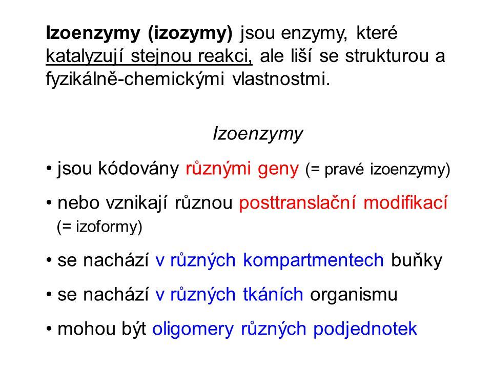 Izoenzymy (izozymy) jsou enzymy, které katalyzují stejnou reakci, ale liší se strukturou a fyzikálně-chemickými vlastnostmi. Izoenzymy jsou kódovány r
