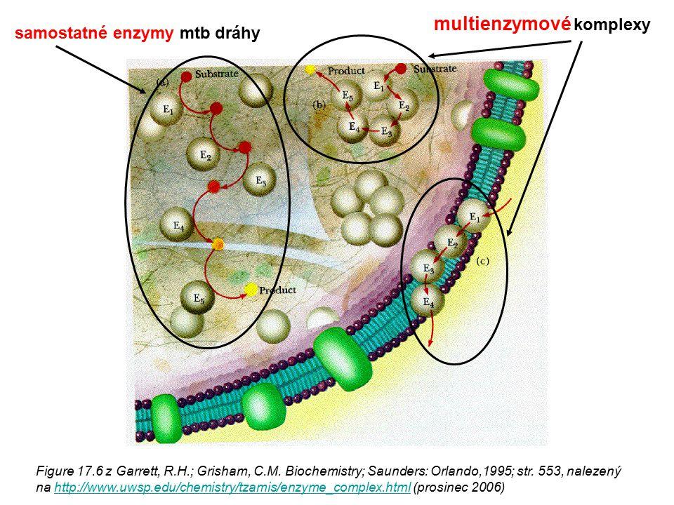 Figure 17.6 z Garrett, R.H.; Grisham, C.M. Biochemistry; Saunders: Orlando,1995; str. 553, nalezený na http://www.uwsp.edu/chemistry/tzamis/enzyme_com