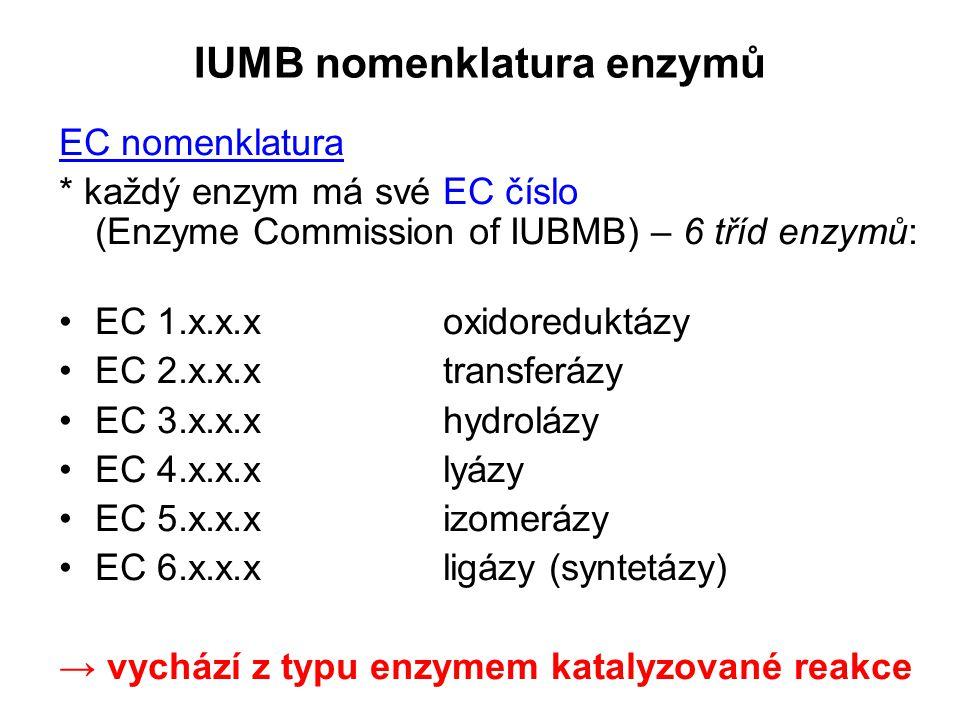 IUMB nomenklatura enzymů EC nomenklatura * každý enzym má své EC číslo (Enzyme Commission of IUBMB) – 6 tříd enzymů: EC 1.x.x.xoxidoreduktázy EC 2.x.x