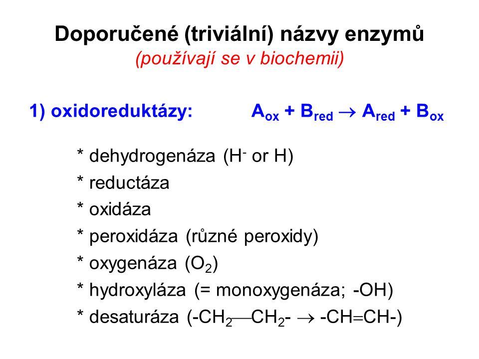 Doporučené (triviální) názvy enzymů (používají se v biochemii) 1) oxidoreduktázy: A ox + B red  A red + B ox * dehydrogenáza (H - or H) * reductáza *