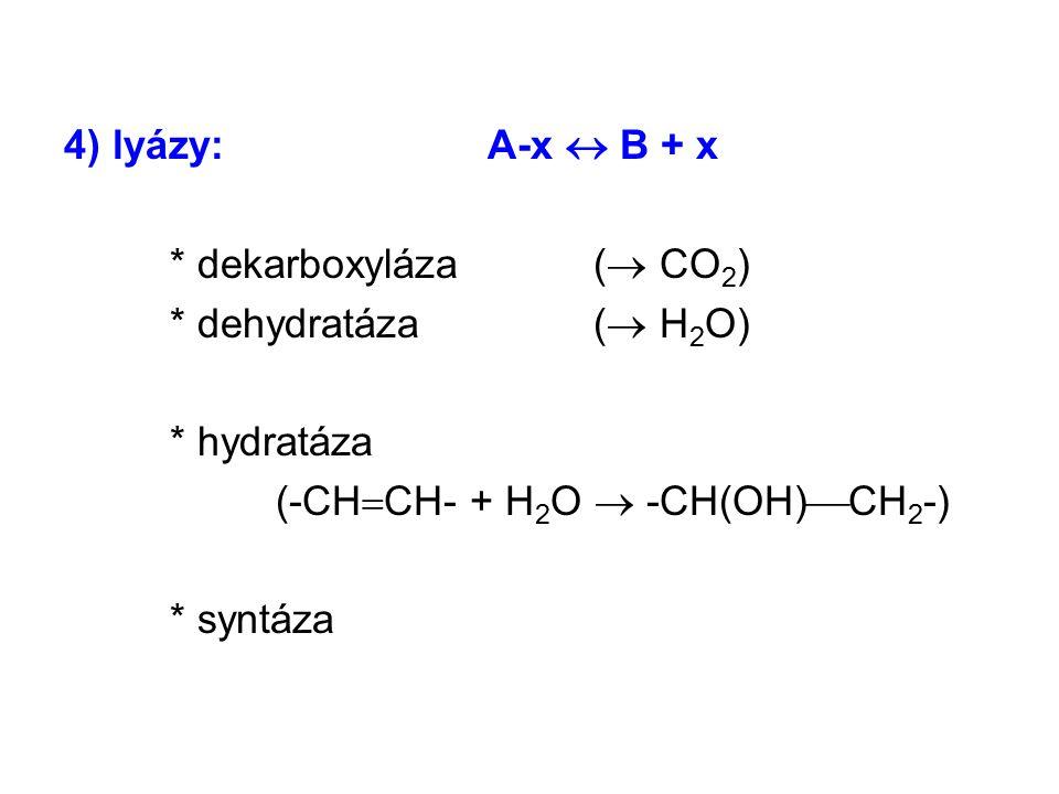 4) lyázy:A-x  B + x * dekarboxyláza (  CO 2 ) * dehydratáza (  H 2 O) * hydratáza (-CH  CH- + H 2 O  -CH(OH)  CH 2 -) * syntáza