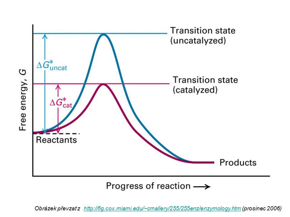 1) Kompetitivní inhibice inhibitor je strukturně podobný substrátu váže se do aktivního centra, ale není enzymem přeměňován zvyšuje K m (  afinity enzymu k substrátu) zvýšením koncentrace substrátu lze inhibici potlačit inhibice je vratná Obrázek převzat z http://www.steve.gb.com/science/enzymes.html (prosinec 2006) http://www.steve.gb.com/science/enzymes.html