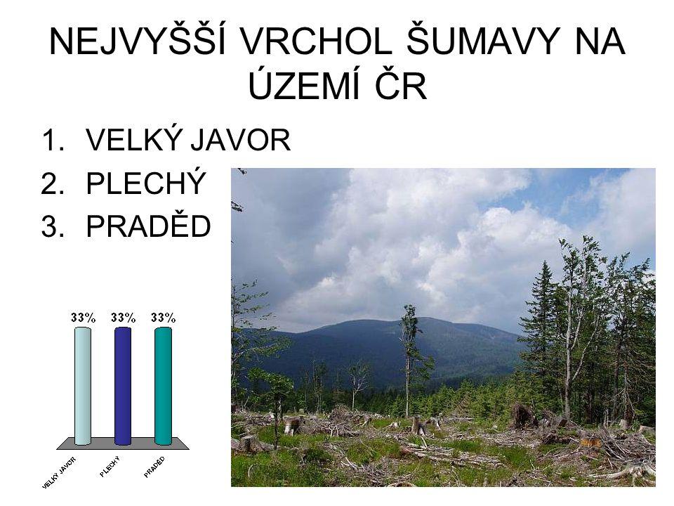 NEJVYŠŠÍ VRCHOL ŠUMAVY NA ÚZEMÍ ČR 1.VELKÝ JAVOR 2.PLECHÝ 3.PRADĚD