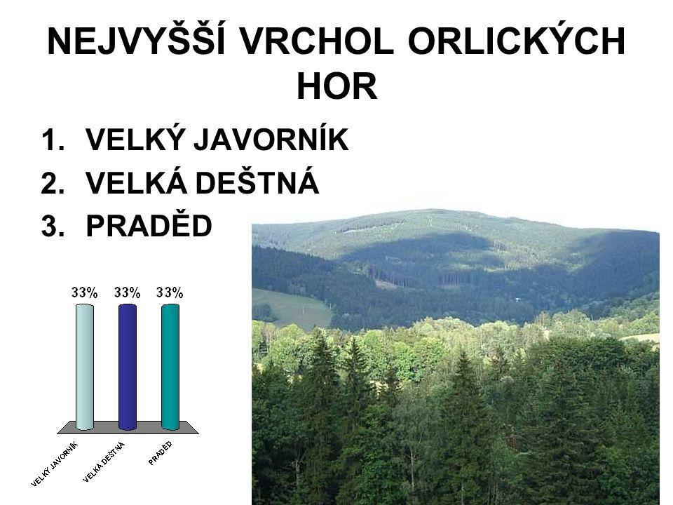 NEJVYŠŠÍ VRCHOL ORLICKÝCH HOR 1.VELKÝ JAVORNÍK 2.VELKÁ DEŠTNÁ 3.PRADĚD