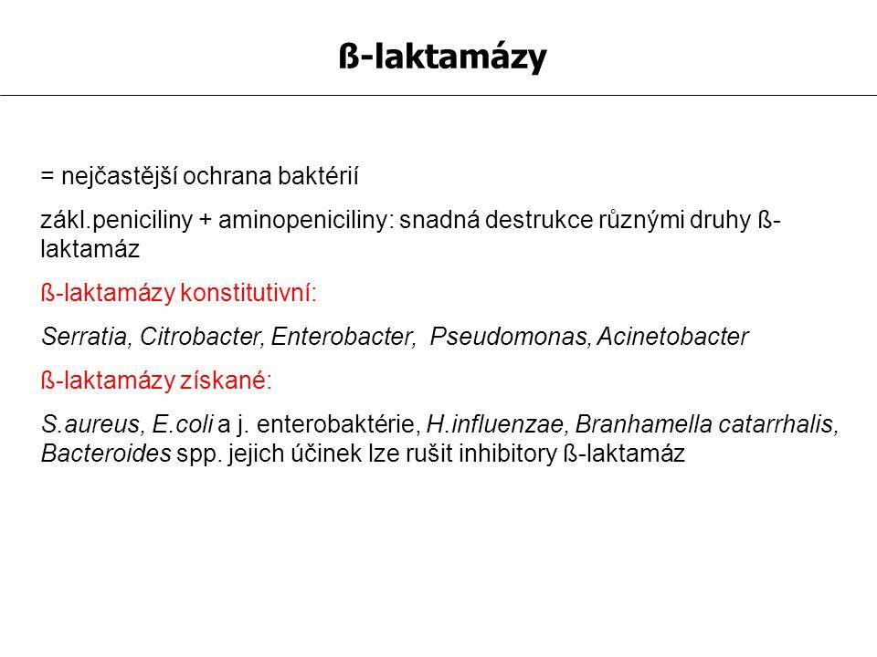 ß-laktamázy = nejčastější ochrana baktérií zákl.peniciliny + aminopeniciliny: snadná destrukce různými druhy ß- laktamáz ß-laktamázy konstitutivní: Se