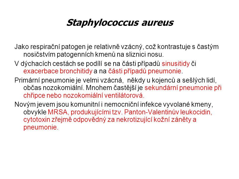 Etiologie: virová: EB viry, cytomegaloviry, adenoviry bakteriální: Streptococcus pyogenes (nejčastěji) Epidemiologie: Inkubační doba je 2-6 kapénková a kontaktní nákaza, postihuje nejčastěji věkovou skupinu 5-15 let, má sezónní, kolektivní až epidemický výskyt dnů Příznaky: rychlý začátek onemocnění, bolesti v krku, polykací obtíže, horečka, třesavka, Obj: zduřelé, rudé mandle s čepy a povlaky, zvětšení a bolestivost uzlin Vyšetření: FW,KO+dif., CRP, mikrobiologie, Direction antigen test ( DAT) Dif.dg.: syndrom infekční mononukleózy Akutní tonzilitida Charakteristika: je zánět postihující lymfatickou tkáň Waldayerova okruhu (synonymum- angína)