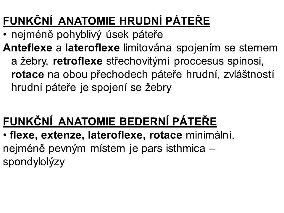 FUNKČNÍ ANATOMIE HRUDNÍ PÁTEŘE nejméně pohyblivý úsek páteře Anteflexe a lateroflexe limitována spojením se sternem a žebry, retroflexe střechovitými