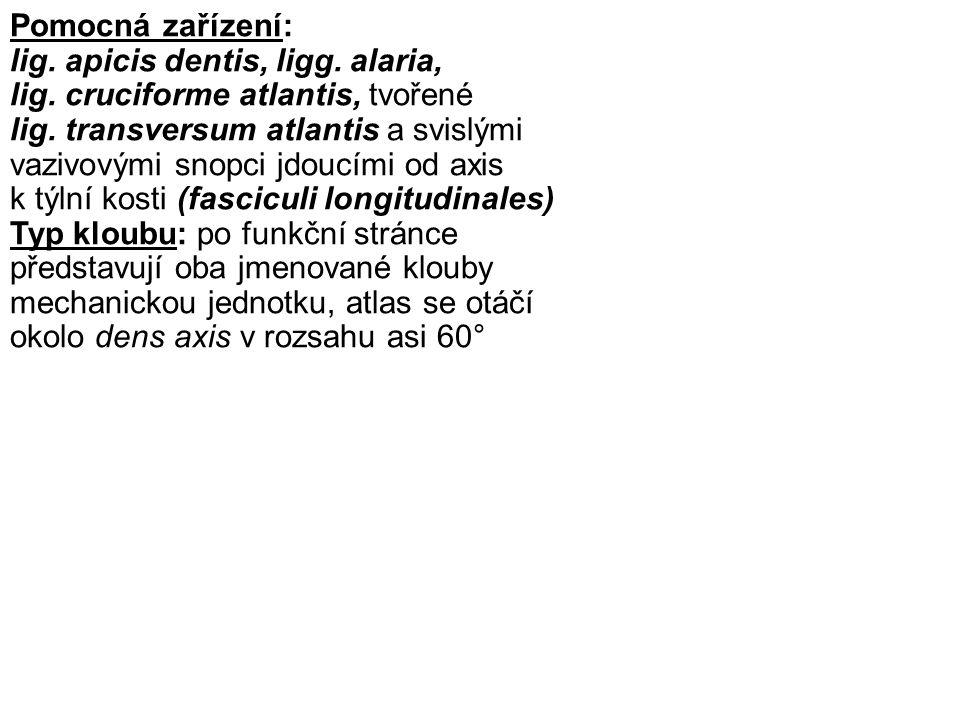 Pomocná zařízení: lig. apicis dentis, ligg. alaria, lig. cruciforme atlantis, tvořené lig. transversum atlantis a svislými vazivovými snopci jdoucími
