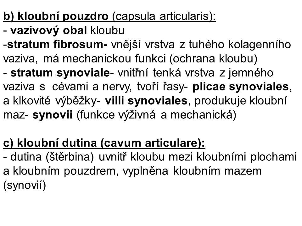 d) pomocná kloubní zařízení: - vyskytují se pouze v některých kloubech - podílejí se na zajištění jejich lepší funkce kloubní vazy (ligamenta articularia): - (intraartikulární vazy, extraartikulární vazy) chrupavčité ploténky (disci et menisci): - vazivová chrupavka, intraartikulárně, inkongruence ploch - discus articularis- přepažuje úplně kloubní dutinu a dělí ji na dvě zcela oddělené dutiny - meniscus articularis- přepažuje neúplně kloubní štěrbinu chrupavčité lemy (labra articularia): - pruhy vazivové chrupavky, po obvodu kloubních jamek, které tak prohlubují tíhové váčky (bursae synoviales): - váčky v okolí kloubu, odštěpené z kloubního pouzdra, kde svaly a šlachy naléhají na kostní podklad, usnadňují pohyb kloubů, snižují tření