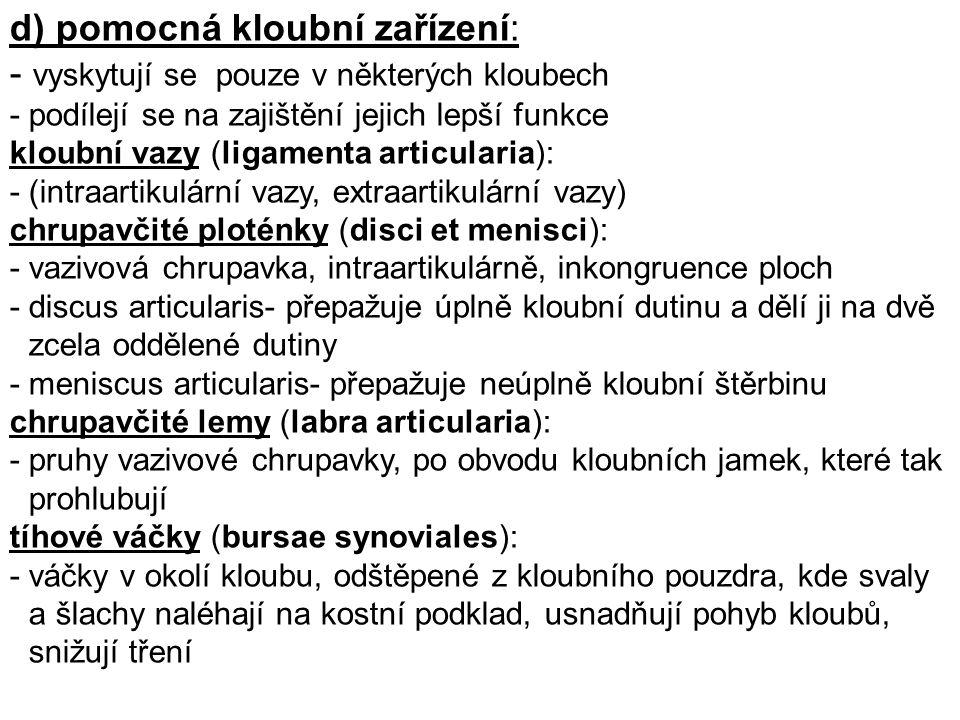 Pomocná zařízení: lig.apicis dentis, ligg. alaria, lig.