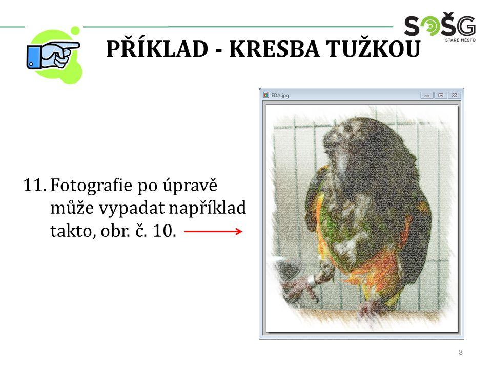 PŘÍKLAD - KRESBA TUŽKOU 11.Fotografie po úpravě může vypadat například takto, obr. č. 10. 8