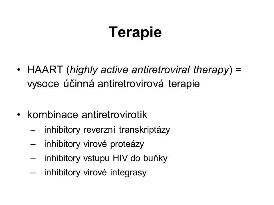 Terapie HAART (highly active antiretroviral therapy) = vysoce účinná antiretrovirová terapie kombinace antiretrovirotik – inhibitory reverzní transkriptázy –inhibitory virové proteázy –inhibitory vstupu HIV do buňky – inhibitory virové integrasy