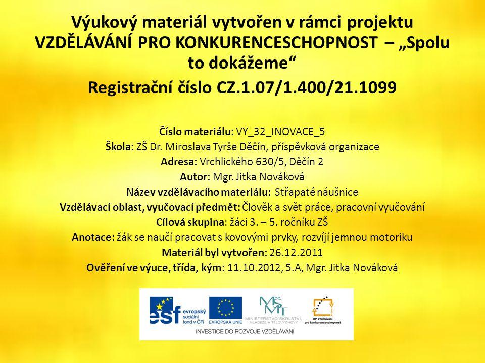 Střapaté náušnice VY_32_INOVACE_05 – STŘAPATÉ NÁUŠNICE