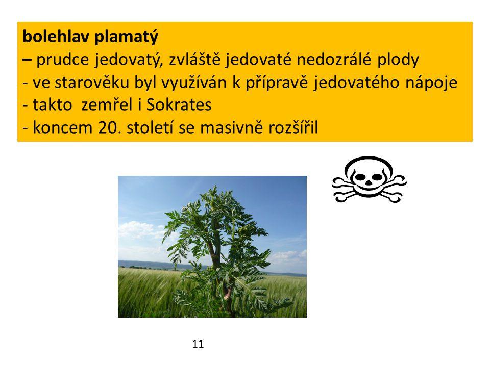Doplň tuto větu – tajenkou Některé miříkovité rostliny jsou lidmi využívány jako: Z každého řádku si napiš pouze písmeno z oranžového okénka.