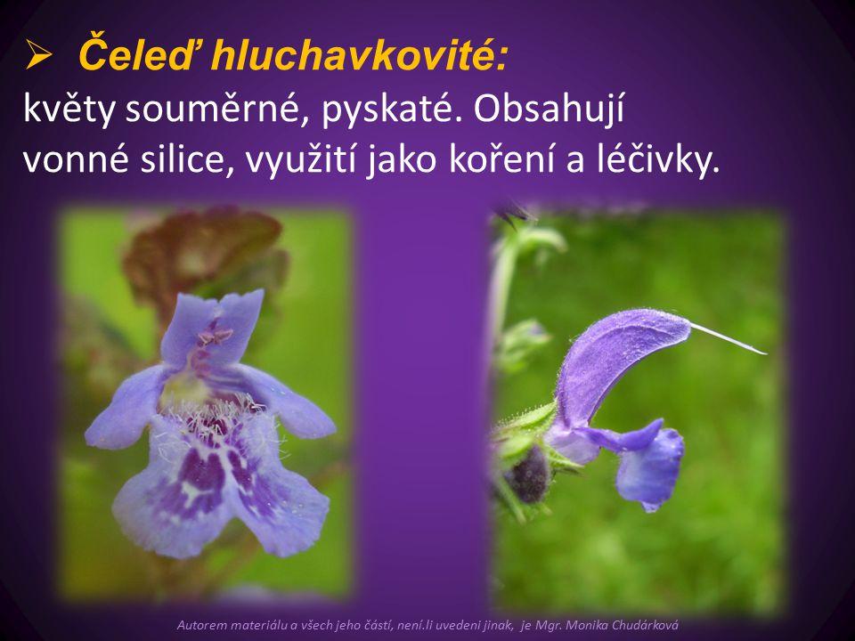  Čeleď hluchavkovité: květy souměrné, pyskaté.
