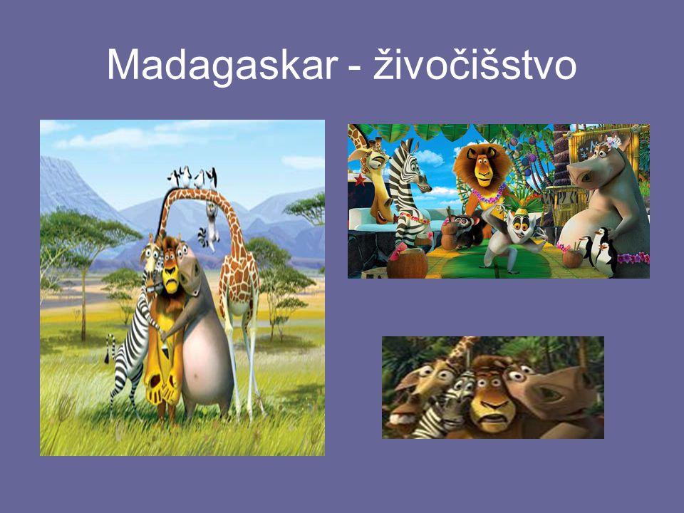 Madagaskar - živočišstvo