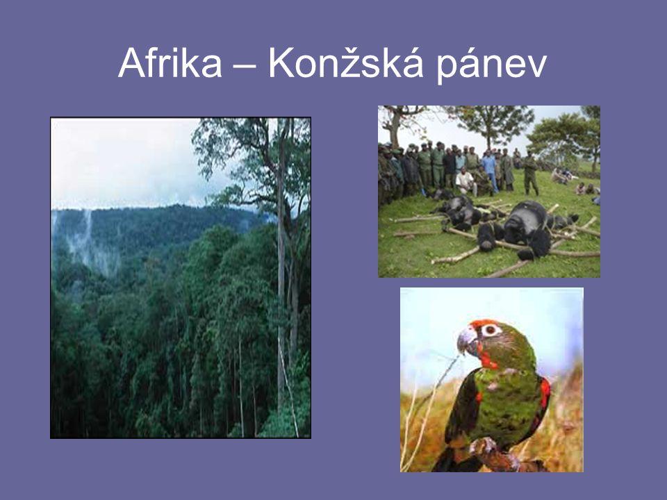 Afrika – Konžská pánev