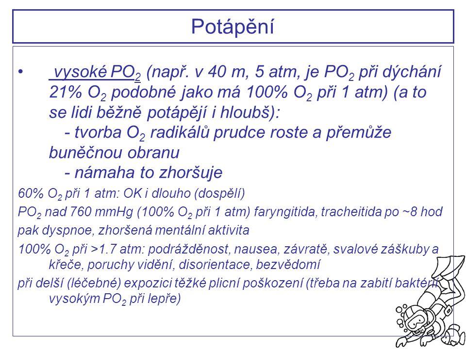 vysoké PO 2 (např. v 40 m, 5 atm, je PO 2 při dýchání 21% O 2 podobné jako má 100% O 2 při 1 atm) (a to se lidi běžně potápějí i hloubš): - tvorba O 2