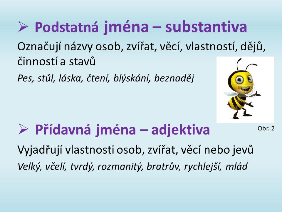  Podstatná jména – substantiva Označují názvy osob, zvířat, věcí, vlastností, dějů, činností a stavů Pes, stůl, láska, čtení, blýskání, beznaděj  Př