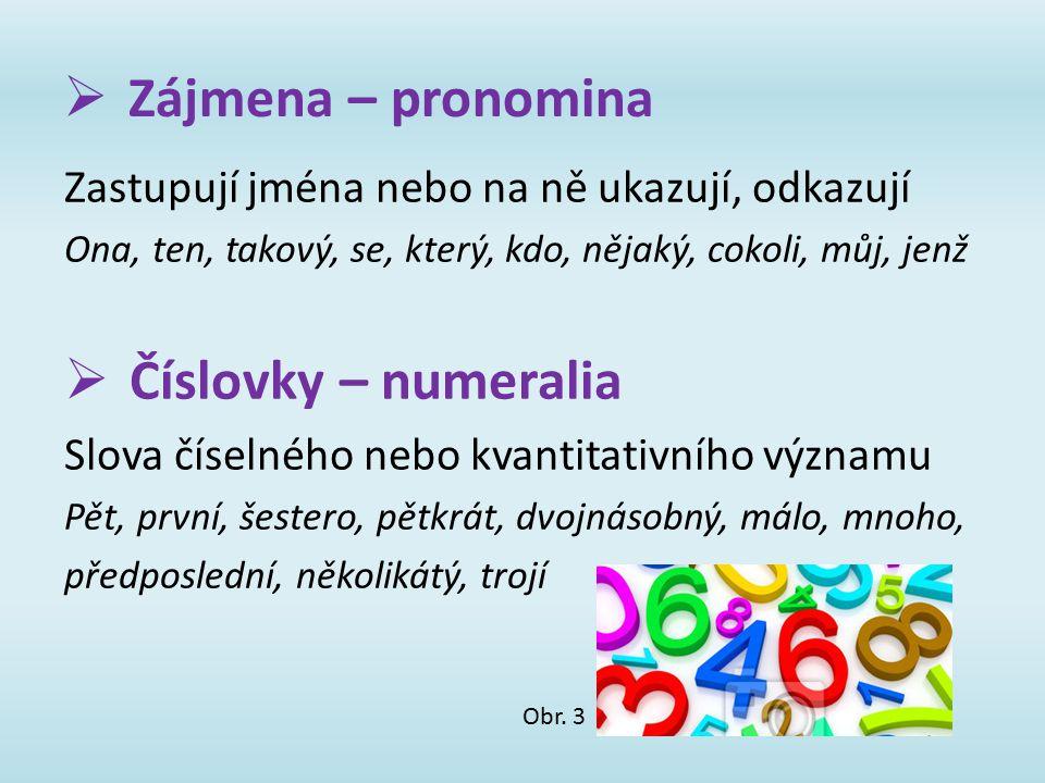  Zájmena – pronomina Zastupují jména nebo na ně ukazují, odkazují Ona, ten, takový, se, který, kdo, nějaký, cokoli, můj, jenž  Číslovky – numeralia