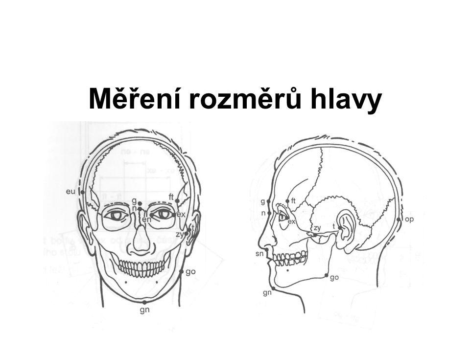 Hloubka střední třetiny obličeje (t – sn) Posuvné měřidlo Přímá vzdálenost bodu subnasale od bodu tragion